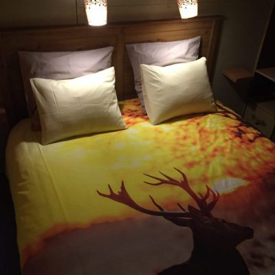 Glamping Safari Tent for 2 to 4 people